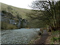SK1672 : River Wye upstream of Cressbrook by Andrew Hill