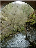 SK1273 : River Wye below viaduct arch, Chee Dale by Andrew Hill