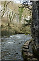 SK1273 : River Wye, Chee Dale by Andrew Hill