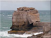 SY6768 : Portland Bill - Pulpit Rock by Chris Talbot