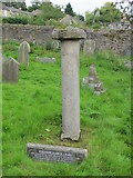 NY9939 : The Old Stanhope Market Cross by Mike Quinn