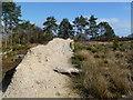 SZ0184 : Newton Heath, cob wall by Mike Faherty