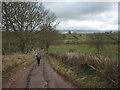 NY6221 : Walking down Hoggs Lane, King's Meaburn by Karl and Ali