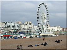 TQ3103 : Brighton Beach and Wheel by JThomas