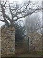 SX8778 : Gateway to Ugbrooke estate by David Smith