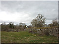 NY6021 : Disused limestone quarry, Byesteads by Karl and Ali