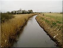 SU9201 : Aldingbourne Rife by Peter Holmes