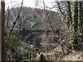 SX0168 : Bridge over River Camel at Grogley Moor by David Smith