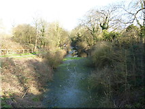 SU7151 : The Basingstoke Canal at Greywell by Dr Neil Clifton