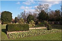 TQ4666 : Formal garden, Priory Gardens by Ian Capper