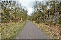 SK1373 : Monsal Trail by Ashley Dace