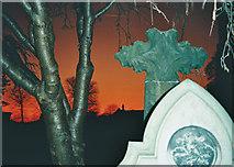 SD7336 : Red Sky - Grave Stones - Tree Bark by Tom Howard