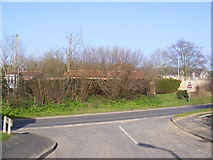 TM3877 : Mill Hill Drive, Halesworth by Adrian Cable