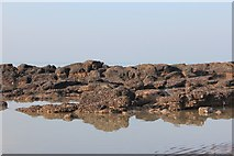 TQ8109 : Exposed rocks on Pelham Beach by Oast House Archive