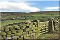 SE6797 : Blakey Ridge by Pauline E