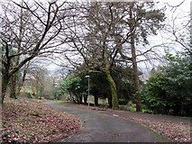 NS3174 : Road in Birkmyre Park by Thomas Nugent