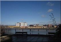 TQ2575 : Viewing terrace, Riverside West, Wandsworth by Derek Harper