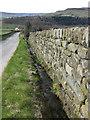 SE6797 : Roadside drain by Pauline E