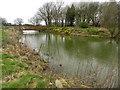SJ9387 : Moat at Broadoak Farm by Peter Barr