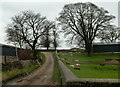 SK1376 : Bridleway between farms in Wheston by Andrew Hill