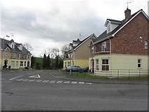H6357 : Riverbank, Ballygawley by Kenneth  Allen