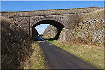 SK1462 : Bridge, Tissington Trail by Ian Taylor