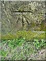 ST7435 : Bench Mark, Alfred's Tower by Maigheach-gheal