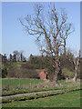 SO7988 : Farmland north of Six Ashes, Staffordshire by Roger  Kidd