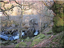 SH7357 : A view through the trees by Chris McAuley