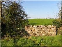 H2118 : Meenaghan Townland by Kenneth  Allen