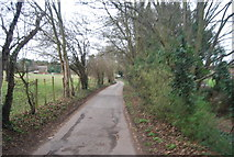 TR1955 : Old Palace Rd by N Chadwick