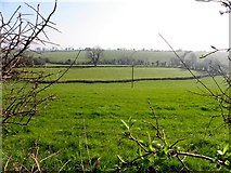 H2212 : Sruhagh Townland by Kenneth  Allen