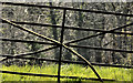 J4075 : Old gate near Craigantlet hill, Belfast by Albert Bridge
