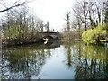 SU8956 : The Guildford Road bridge by Christine Johnstone