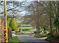 ST5960 : 2012 : Road past Stowey Cottage by Maurice Pullin