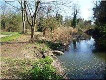 TQ1372 : River Crane in Crane Park by Marathon