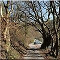 ST2393 : Approaching Cwm Carn Lake by Robin Drayton