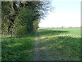 TL0717 : Footpath from Pepperstock to Markyate Road by Rob Farrow