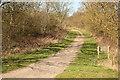 SP7480 : Brampton Valley Way by Richard Croft