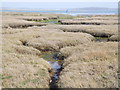 SU7601 : Saltmarsh Channel by Colin Smith