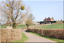 SO6731 : Stone House farm near Much Marcle by Roger Davies