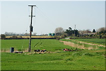 TQ0004 : View Towards Tortington, Sussex by Peter Trimming