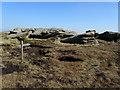 SD9335 : Weather Stones by Chris Heaton