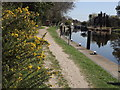 SU9079 : Thames Path Above Bray Lock by Colin Smith