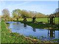 SU0425 : River Ebble, Broad Chalke by Maigheach-gheal