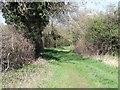 SK4222 : Field Lane by Ian Calderwood