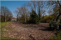 TQ4666 : Pond, Priory Gardens by Ian Capper