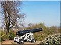 SJ9090 : Vernon Park Cannon by Gerald England