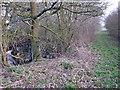 SJ8466 : Footpath to Wornish Nook by Richard Dorrell