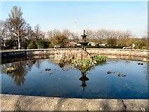 SJ9090 : Lily Pond by Gerald England